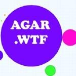 Agar.wtf