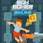 Box Boxer In Boxland